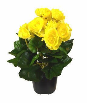 Plante artificielle Bégonia jaune 25 cm