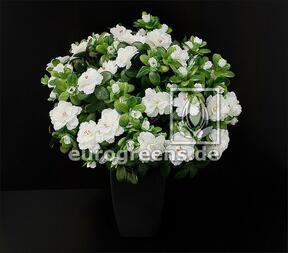 Bouquet artificiel Azalée Belge blanc 40 cm