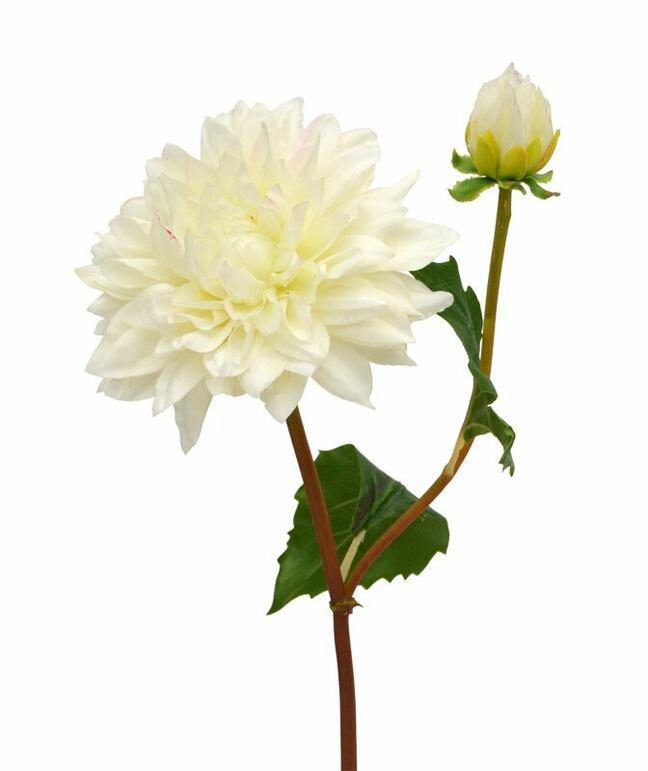 Branche artificielle Dália crème 50 cm