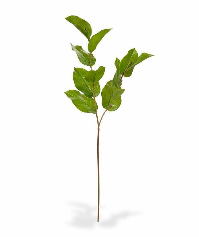 Branche artificielle Salal 65 cm