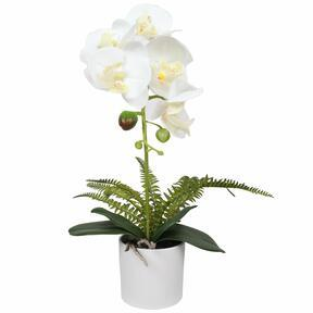 Orchidée artificielle blanche avec fougère 37 cm