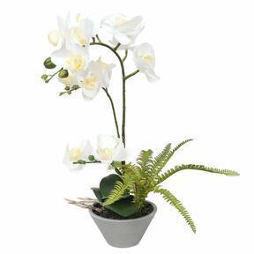 Orchidée artificielle blanche avec fougère 43 cm