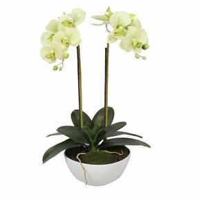 Orchidée au beurre artificielle 50 cm