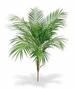Palmier artificiel Areca 80 cm