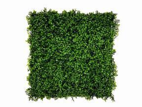 Panneau de feuilles artificielles Fougère - 50x50 cm