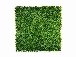 Panneau de feuilles artificielles Peperomia - 50x50 cm