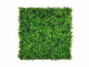 Panneau de feuilles artificielles Stonecrop - 50x50 cm