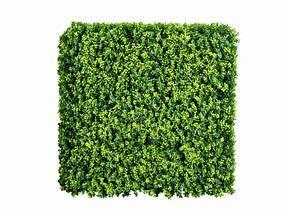 Panneau de feuillus artificiel Buxus - 50x50 cm