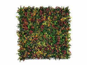 Panneau de fleurs artificielles Leucadendron - 50x50 cm