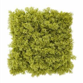 Panneau de mousse verte artificielle - 25x25 cm