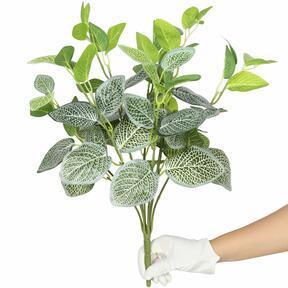 Plante artificielle Fitónia blanc 45 cm