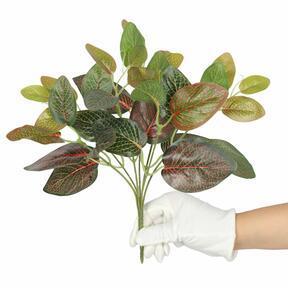 Plante artificielle Fitonia rouge 25 cm