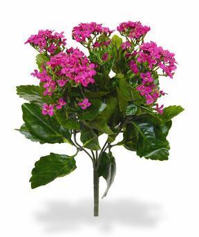Plante artificielle Kalanchoa rose 30 cm