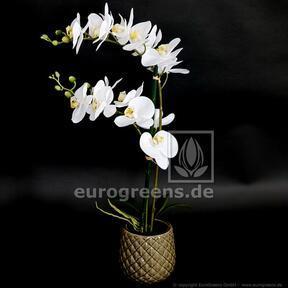 Plante artificielle Orchidée blanche 65 cm