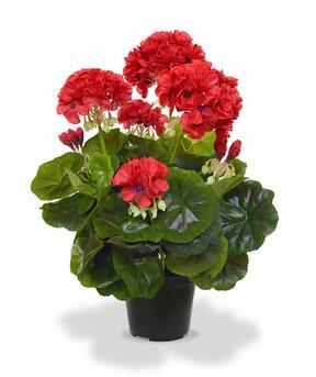 Plante artificielle Pakost rouge 40 cm