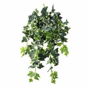 Vrille artificielle Lierre blanc-vert 80 cm