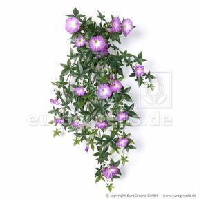 Vrille de Pétunia artificielle violet 75 cm